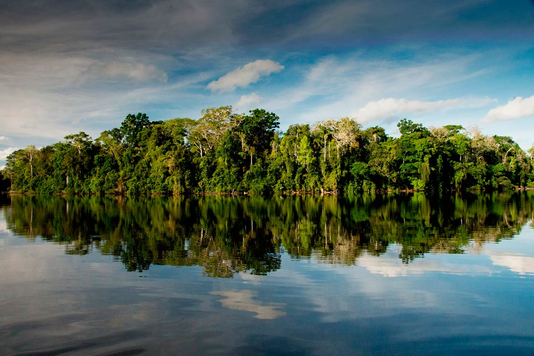 Salvador Lake in Manu National Park